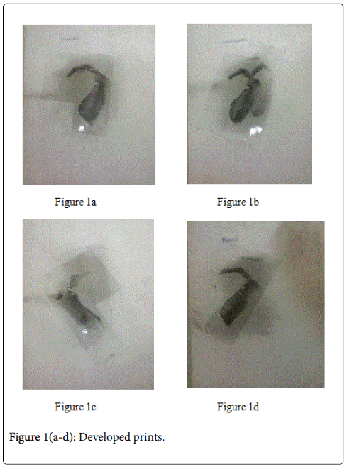 forensic-research-Developed-prints