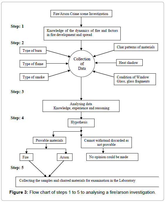 forensic-research-Flow-chart
