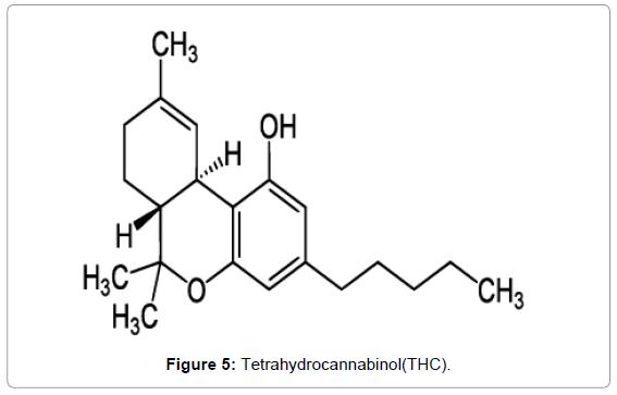 forensic-research-Tetrahydrocannabinol