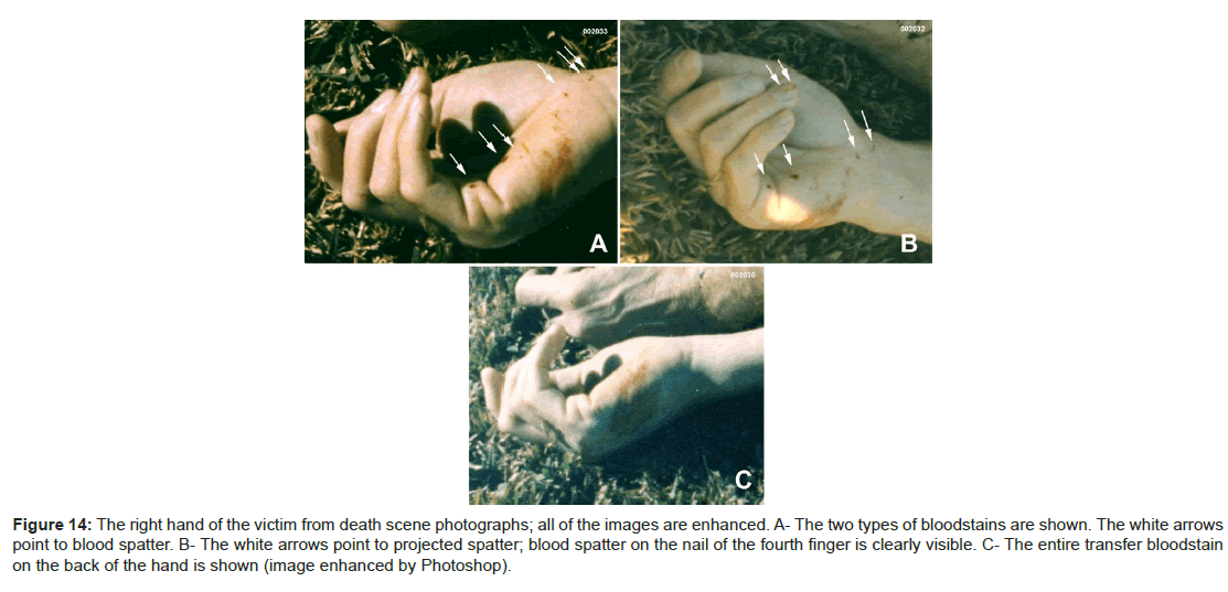 forensic-research-death-scene-photographs