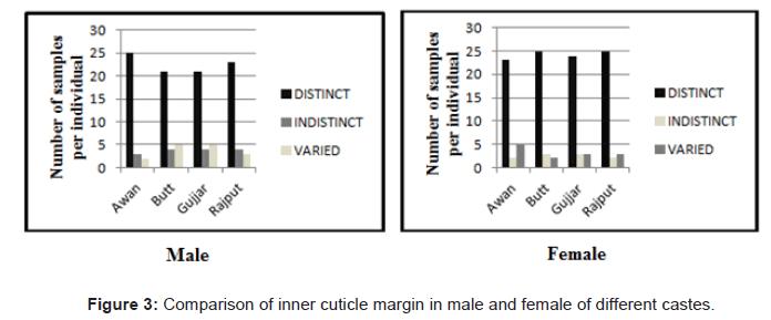 forensic-research-margin-male-female