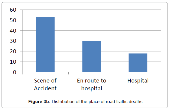 forensic-research-place-road-traffic-deaths