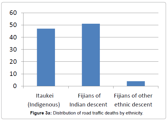 forensic-research-road-traffic-deaths-ethnicity