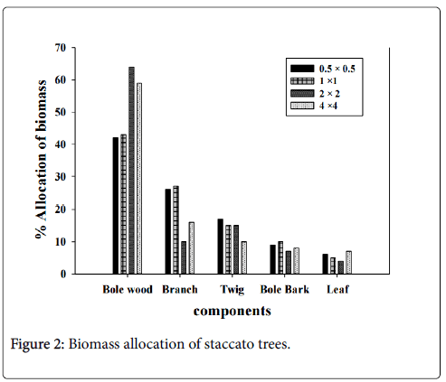 forest-research-Biomass-allocation