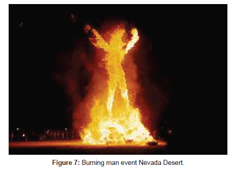 forest-research-Burning-man-event