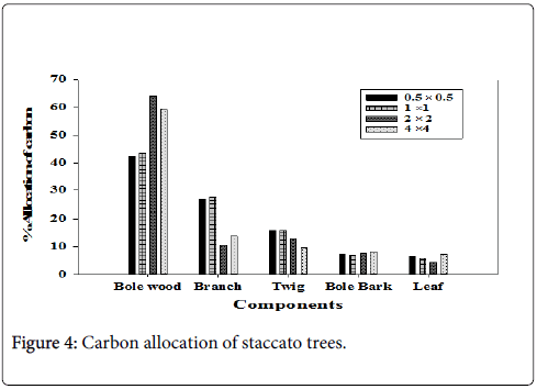forest-research-Carbon-allocation