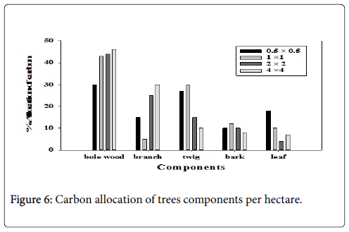 forest-research-trees-components