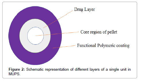 formulation-science-bioavailability-layers