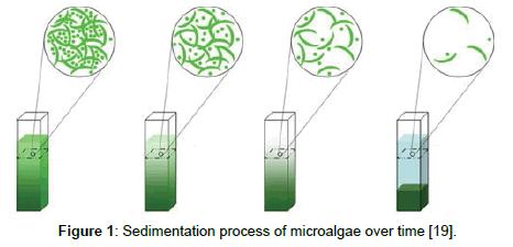 fundamentals-renewable-energy-Sedimentation