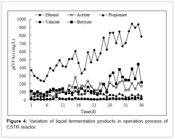 fundamentals-renewable-energy-Variation-liquid-fermentation