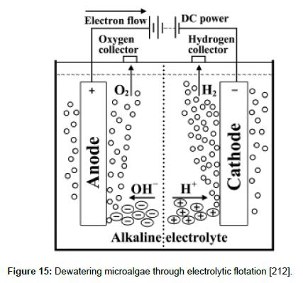 fundamentals-renewable-energy-electrolytic-flotation