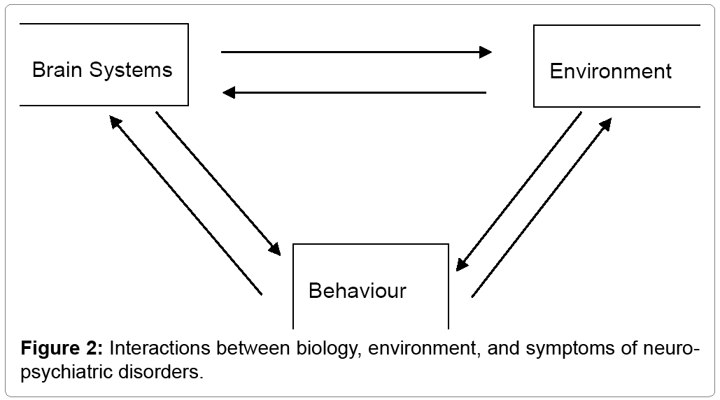 interaction between major environmental systems Overview of theories of environment systems are interrelated parts or subsystems constituting an complex interaction between.