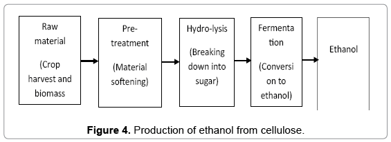 Biofuel Production In India Potential Prospectus And Technology  Fundamentalsrenewableenergyethanolcellulose