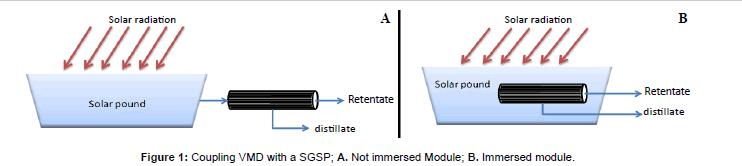 fundamentals-renewable-immersed-Module
