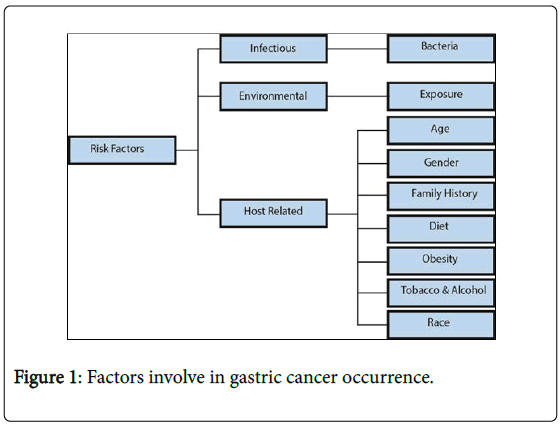 gastrointestinal-cancer-stromal-tumors-gastric-cancer