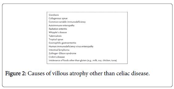 gastrointestinal-digestive-Causes-villous-atrophy