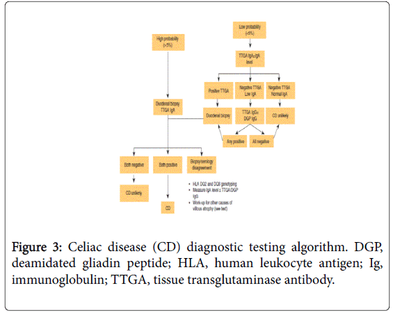 gastrointestinal-digestive-human-leukocyte-antigen