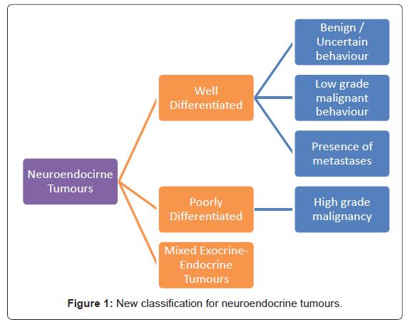 gastrointestinal-digestive-neuroendocrine-tumours