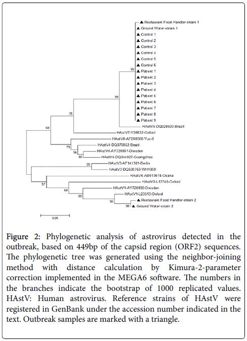 gastrointestinal-digestive-system-Phylogenetic-analysis