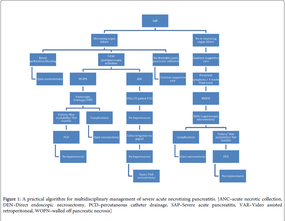 gastrointestinal-digestive-system-practical-algorithm