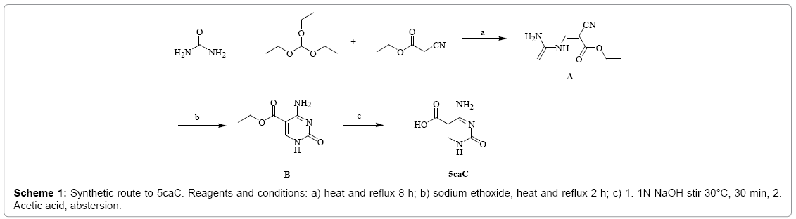 gene-technology-Synthetic-route