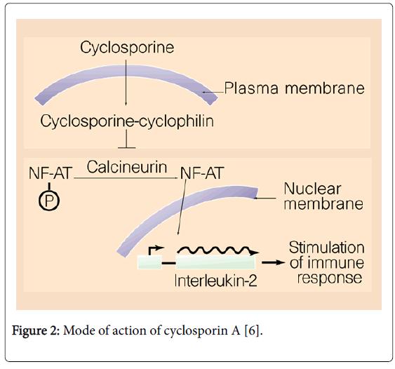 general-medicine-cyclosporin
