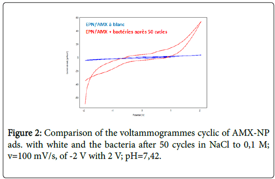 general-medicine-voltammogrammes-cyclic