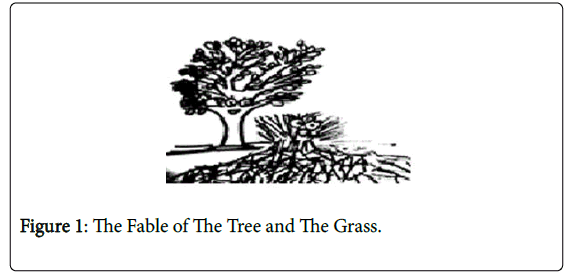 general-practice-Fable-Tree-Grass