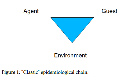 general-practice-epidemiological-chain