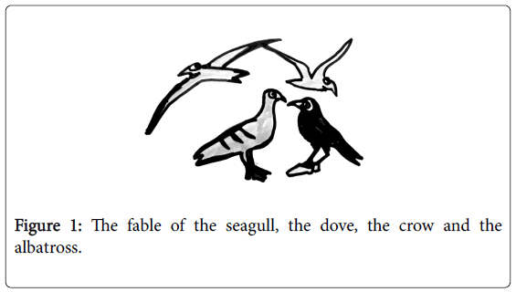 general-practice-fable-seagull-dovet
