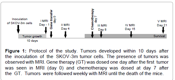 genetic-syndromes-gene-therapy-Tumors-developed