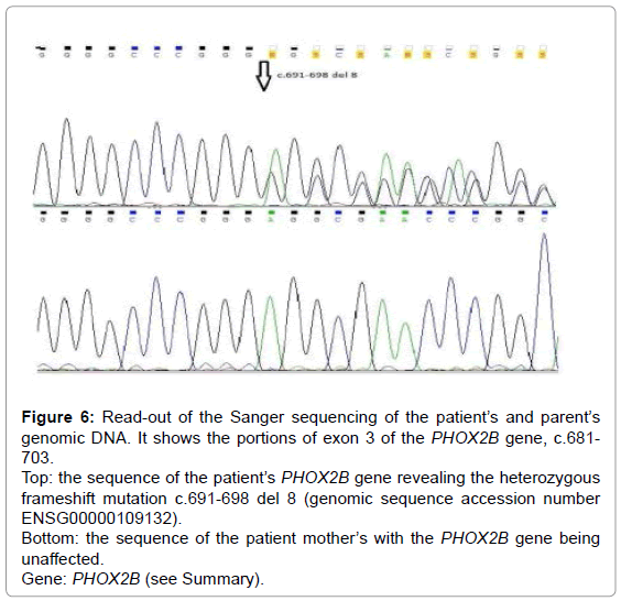 genetic-syndromes-gene-therapy-sequence-accession