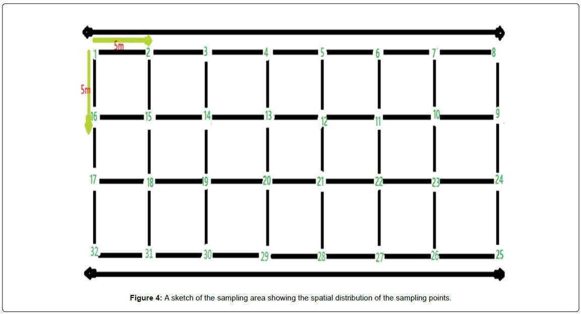 geology-geosciences-spatial-distribution