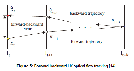 geophysics-remote-sensing-optical-flow-tracking