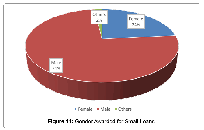 global-economics-gender-awarded-small-loans