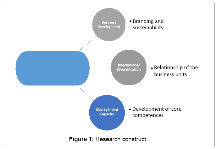 Methodology and Strategies for Companies in the Process of