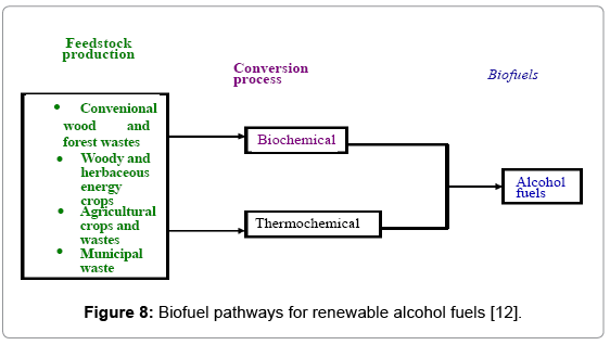 global-journal-technology-Biofuel-pathways-renewable