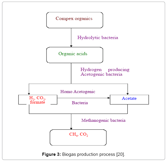 global-journal-technology-Biogas-production-process