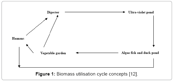 global-journal-technology-Biomass-utilisation-cycle