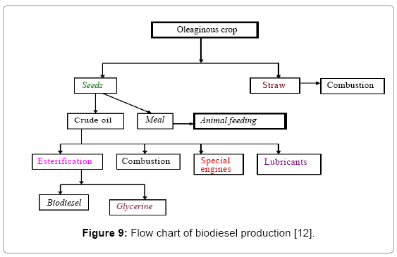 global-journal-technology-Flow-chart-biodiesel