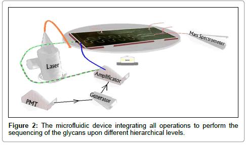 glycomics-lipidomics-device-integrating