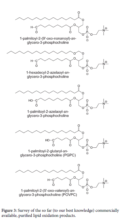 glycomics-lipidomics-lipid-oxidation