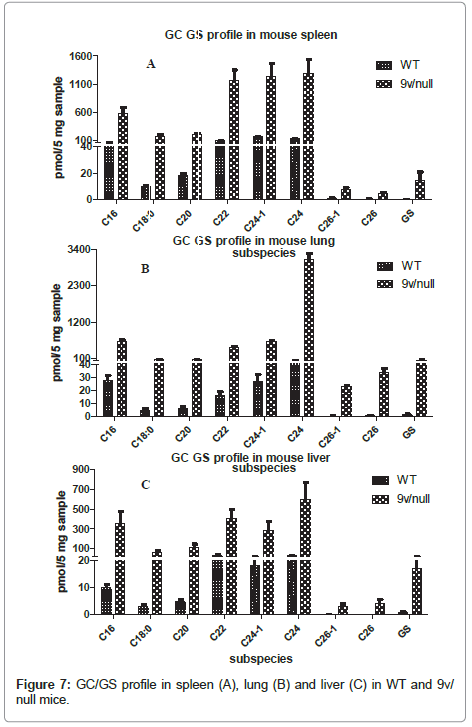 glycomics-lipidomics-profile-spleen