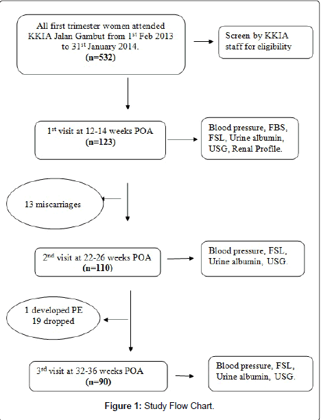 gynecology-Flow-Chart