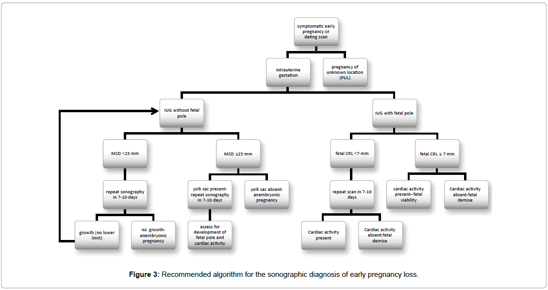 gynecology-obstetrics-Recommended-algorithm