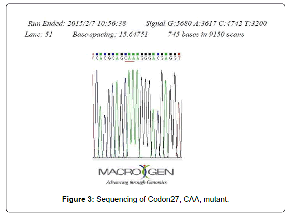 gynecology-obstetrics-Sequencing-Codon27