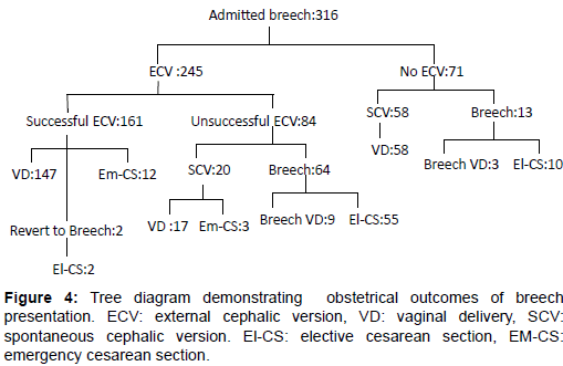 Early intervention in breech presentation to reduce of cesarean health medical informatics demonstrating obstetrical outcomes figure 4 tree diagram demonstrating obstetrical outcomes of breech presentation ccuart Choice Image
