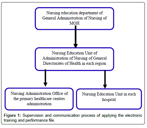 Strategies of Improving the Nursing Practice in Saudi Arabia | OMICS