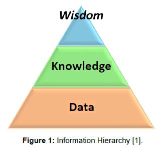 health-medical-informatics-Hierarchy