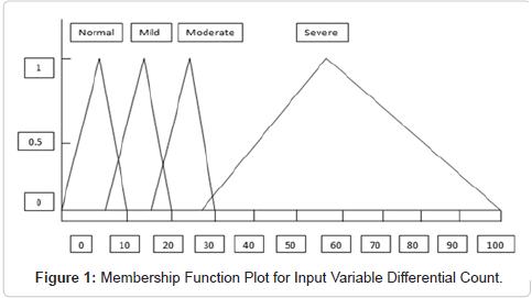 health-medical-informatics-Input